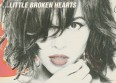 Albums 2012 : N. Jones, &quot;Little Broken Hearts&quot;