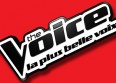 "Un prof de la ""Star Ac"" au casting de ""The Voice"""